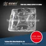 thin wall plate mould solution