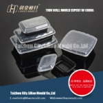 plastic injection lunch box mould