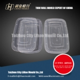 PP thin wall square container mould