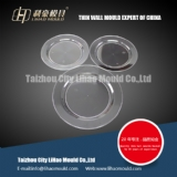 different size of thin wall plate mould